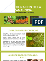Biofertilizacion de La Zanahoria