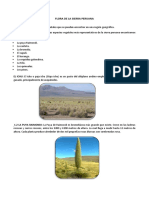 Flora de La Sierra Peruana