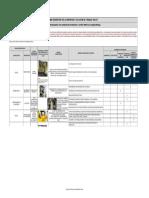 Formato Matriz Jerarquizacion(1