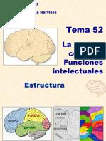 52. La Corteza Cerebral. Funciones Intelectuales