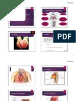 ANATOMIA E Fisiologia Cardíaca Aula 1