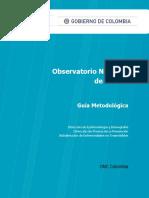 Observatorio Nacional de Cancer Guia Metodologica