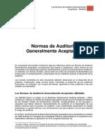 Las Normas de Auditorc3ada Generalmente Aceptadas (1) Convertido (1)