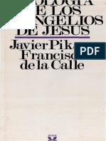 25733151-pikaza-javier-teologia-de-los-evangelios-de-jesus.pdf