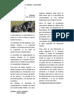 NOTICIA DE LA CIENCIA Y TECNOLOGIA.docx