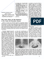 Brain Lesions, Obesity, and Other Disturbances in Mice Treated with Monosodium Glutamate (Olney 1969)