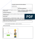 Evidencia 2 formato_peligros_riesgos_sec_economicos.docx