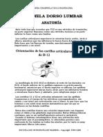 Charnela Dorso Lumbar Cadera Diafragma
