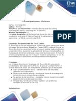 Fomato Preinformes e Informes (1)
