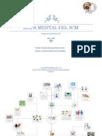 Mapa Mental Del Scm
