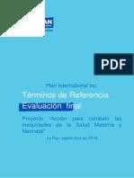 1 TDR-Evaluacion Final-KOICA190919 (1)