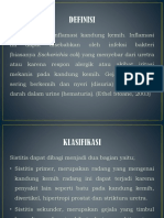 sistitisss.pptx