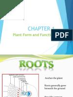 Biology Report