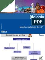 Clase 1 Modelo y Replicación Del ADN 2017 (1)