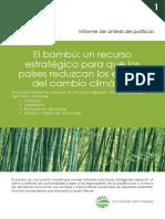 Bamboo Cambio Climatico