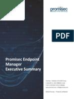 PEM Executive Summary