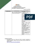 Guia ensayo currículum nacional