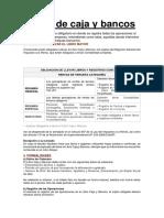 Libro de Caja y Bancos