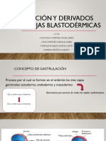 Gastrulación y Derivados de Las Hojas Blastodérmicas