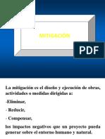 MITIGACION Y PLAN DE MANEJO.pptx.....ros.pptx