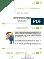 1 Facies sedimentarias.pptx