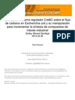 Efectos del sistema regulador CreBC sobre el flujo de carbono en Escherichia coli y su manipulación para incrementar la síntesis de compuestos de interés industrial.pdf