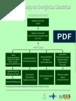 avaliacao_manejo_obstetricias_hemorragia_pos_parto.pdf