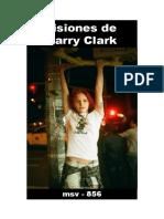 (msv-856) Visiones de Larry Clark