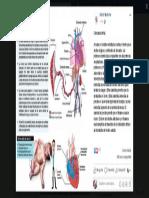 World Medicine - Publicaciones