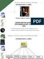 PRESENTACION_ENZIMAS_MIEL (1)
