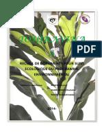 Tohiravina 3.pdf
