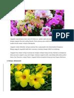 bunga hias.docx