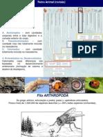 biologia_pratica-03[1]