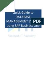 SAP Business One Customization Tools