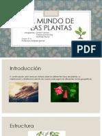 El Mundo de Las Plantas Final (2)