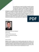 Infografia Teoria de La Organizacion Resumen y Bibliografia