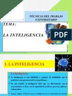 LA INTEIGENCIA.pptx