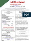 Newsletter Nov 16