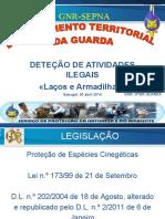 A7 -Apresentacao_Mestre Florestal Diniz