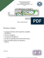 Malfomaciones Congenitas Seminario [Autoguardado]