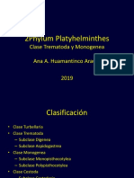 8Phylum Platyhelminthes-2