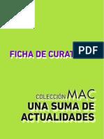 Ficha Curatoria Coleccion Mac Ok