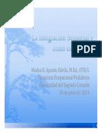 Integracion Sensorial (1)