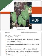 Agr232_c9 Cocoa Propagation