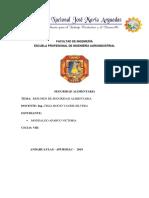 RESUMEN SEGURIDAD DE VIKY.docx