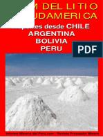 01Litio-Sudamerica.pdf