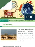 Aula 3 - Fluxos de energia nos ecossistemas.pdf