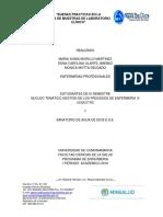 DOCUMENTO TOMA DE MUESTRAS LAB..pdf