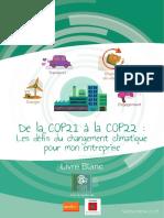 Livre Blanc COP22