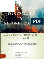 INCENDIOS-FORESTALES_0